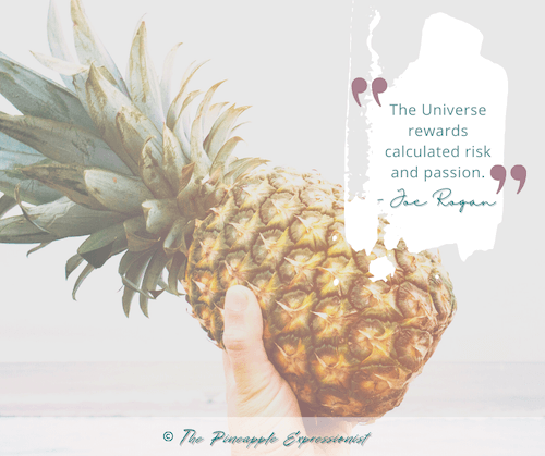 The Universe rewards calculated risk and passion. Quote by Joe Rogan on photo of hand holding a real pineapple and copyright The Pineapple Expressionist.