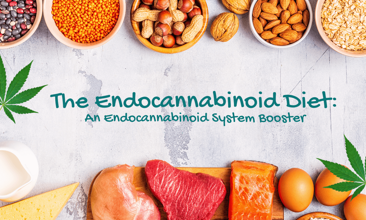 Image of The Endocannabinoid Diet An Endocannabinoid System Booster with bowls of nuts, seeds, and legumes, two walnuts in shell, two cannabis fan leaves, a slice of cheese, pitcher of milk, three eggs in shell, one piece of salmon, one piece of steak, one piece of chicken, one slice of cheese