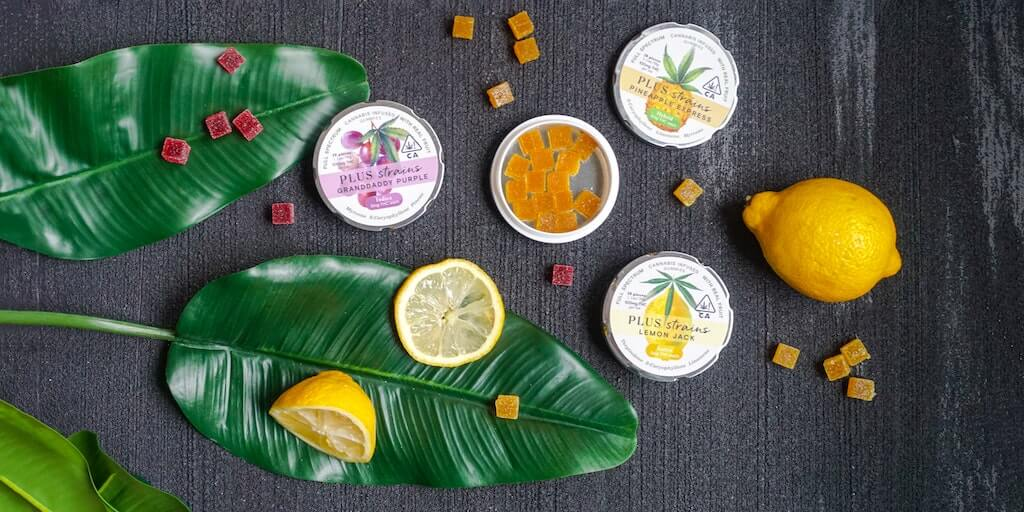 cannabis 101 understanding terpenes - two banana fan leaves with one whole lemon, two lemon slices and three containers of cannabis gummy edibles with gummy edibles spread around the table.
