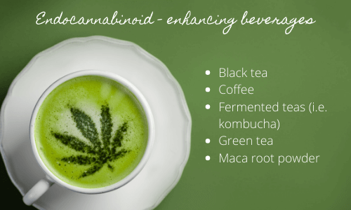 the endocannabinoid diet an Endocannabinoid System Booster - Image of tea cup on saucer with cannabis flower image in foam with words endocannabinoid-enhancing beverages, black tea, coffee, fermented teas I.e. kombucha, green tea and maca root powder on a green background