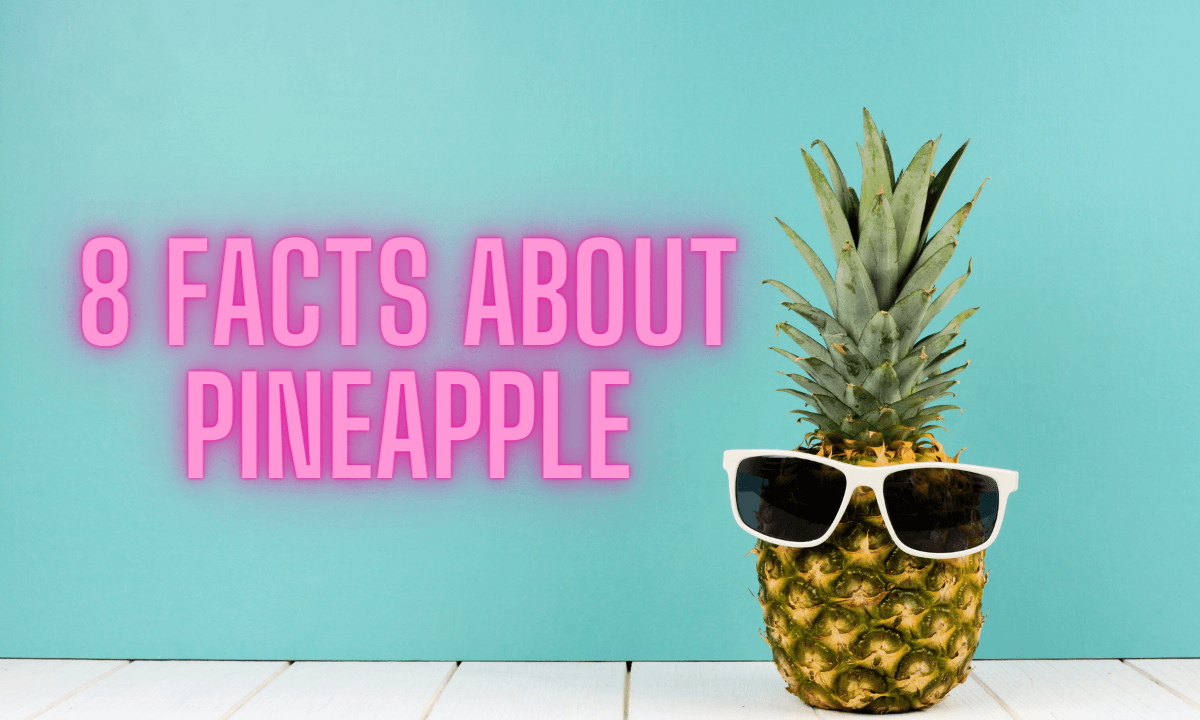 Eight facts about pineapple featured image for the pineapple expressionist with whole pineapple fruit wearing white sunglasses against a solid, teal background sitting on white planking