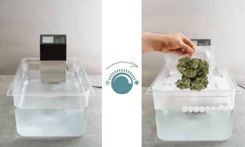 cannabis decarboxylation via sous vide or water bath method of two tubs filled with water with a thermometer and baggy submerged