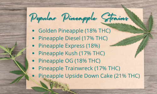 facts about pineapple - popular pineapple strains Golden Pineapple (18% THC) Pineapple Diesel (17% THC) Pineapple Express (18%) Pineapple Kush (17% THC) Pineapple OG (18% THC) Pineapple Trainwreck (17% THC) Pineapple Upside Down Cake (21% THC)