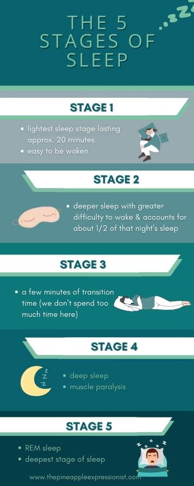 The 5 Stages of Sleep Infographic, Stage 1 lightest sleep stage lasting approx. 20 minutes easy to be woken, Stage 2 deeper sleep with greater difficulty to wake & accounts for about 1/2 of that night's sleep, Stage 3 a few minutes of transition time (we don't spend too much time here), Stage 4 deep sleep muscle paralysis, Stage 5 REM sleep deepest stage of sleep