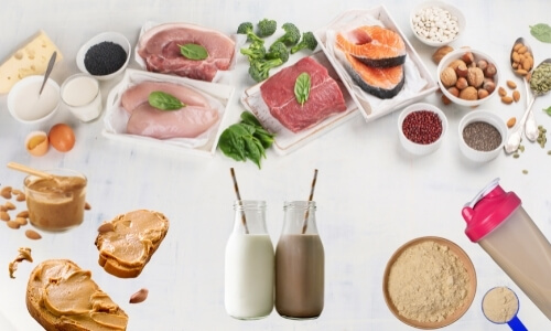 Protein food sources for sports nutrition with images of dairy, raw beef, poultry and fish, nuts, seeds, milk, chocolate milk, protein powder in shaker and scoop, and nut butter spread on bread